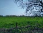Weiden in Breendonk