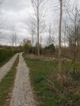 Trage weg langs de Oude Schelde
