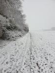 winter in hingene 2.jpg