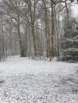 winter in hingene 5.jpg